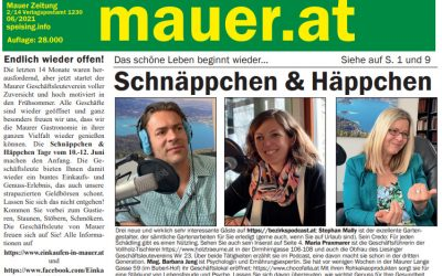 Mauer Zeitung: Juni-Ausgabe